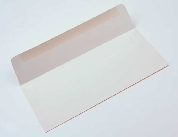 Bild von #10 Square Flap Premium Opaak 24,1 x 10,5cm (50 Stück) [E1D1]